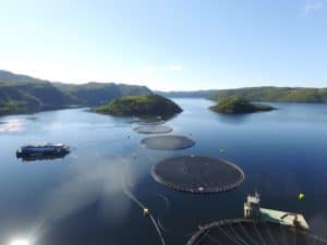 cooke aquaculture netting
